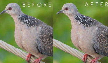 How to Reduce image blurring or Camera Shake in Photoshop
