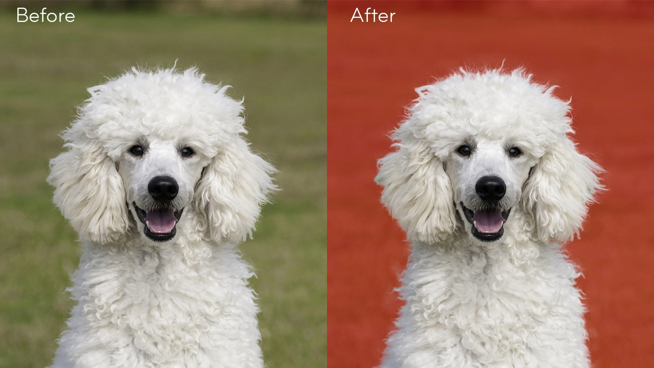 How to select and mask Easily in Photoshop tutorial - before and after