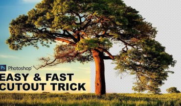 How to Cut Out a Tree Using Calculations in Photoshop